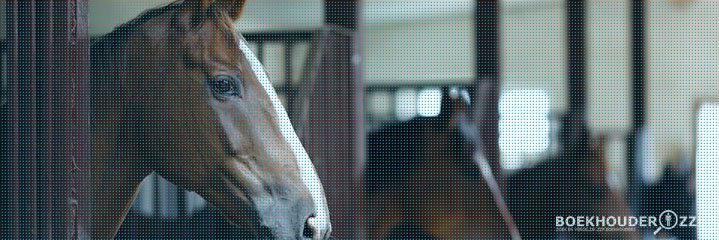 Boekhouder voor paardenhouderij